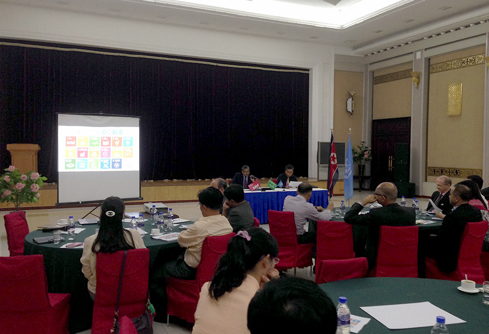 Sustainable Development Goals launched in DPRK