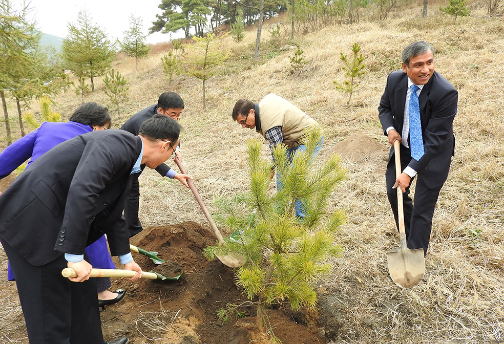 DPR Korea and UN Resident Agencies Celebrate 70th Anniversary of the United Nations